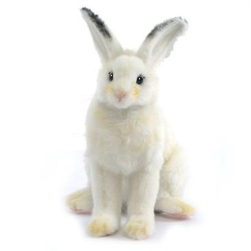 General for store1 Small White Rabbit